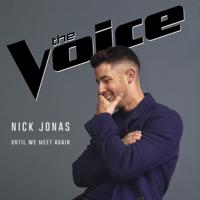 Album Until We Meet Again - Nick Jonas