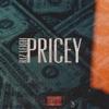Riz Leigh - Pricey