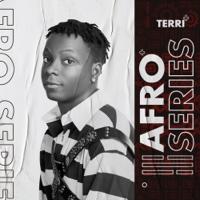 Terri - Afro Series artwork