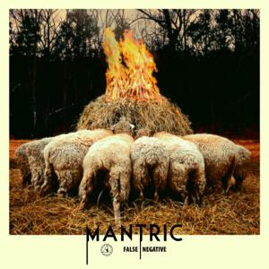 Mantric - False Negative