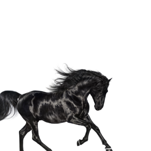Lil Nas X Old Town Road  Lil Nas X album songs, reviews, credits