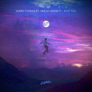 Into You (feat. Sinead Harnett) - Single