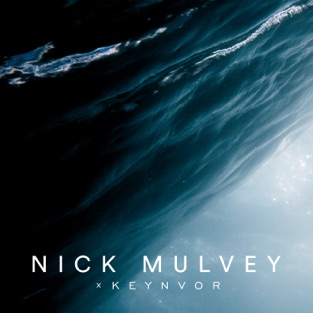 Nick Mulvey – In the Anthropocene – Single [iTunes Plus AAC M4A]