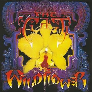 Wild Flower - EP