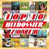 Verschillende artiesten - TOP 40 HITDOSSIER - Zomer kunstwerk