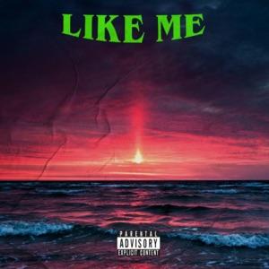 Wayv - Like Me