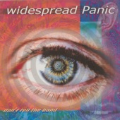 Widespread Panic - Little Lilly