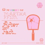 After the Fact - Single