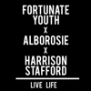 Live Life (feat. Alborosie & Harrison Stafford) - Fortunate Youth