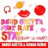 Stay Don t Go Away feat Raye David Guetta R3HAB Remix Single