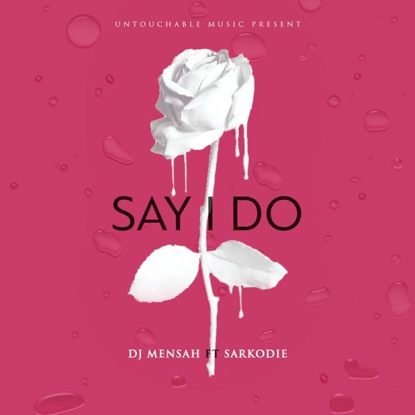 Say I Do (feat. Sarkodie) - Single