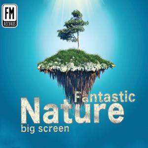 Andrea Montepaone & Dario Giuffrida - Fantastic Nature Big Screen