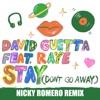 Stay Don t Go Away feat Raye Nicky Romero Remix Single