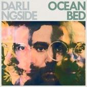 Darlingside - Ocean Bed