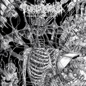 Tomb Mold - Coincidence of Opposites