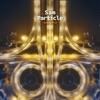 Sam Particle - Opposite