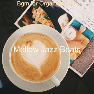 Mellow Jazz Beats - Bgm for Organic Cafes