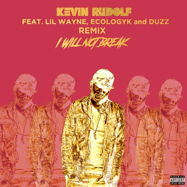 I Will Not Break (Remix) [feat. Lil Wayne, Ecologyk & Duzz] - Single