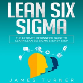 lean six sigma for dummies audiobook