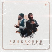 Sumérgeme En Tu Río (feat. Thalles Roberto) artwork