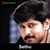 Sethu Original Motion Picture Soundtrack EP