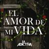 La Adictiva Banda San José de Mesillas - El Amor de Mi Vida ilustración