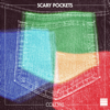 Scary Pockets - What's Love Got to Do With It (feat. Caleb Hawley) artwork
