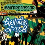 Mad Professor - Kathmandu Dub