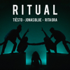 Tiësto, Jonas Blue & Rita Ora - Ritual illustration