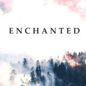 Enchanted artwork