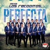Banda Los Recoditos - Perfecta