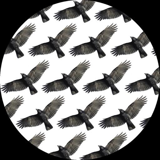 Day After Day (Matrixxman Remix) - Single by Jon Convex