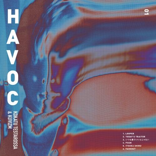 HAVOC Image