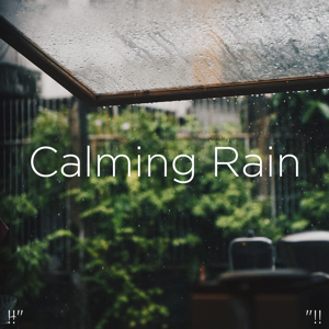 "Rain Sounds & Rain for Deep Sleep - !!"" Calming Rain ""!!"