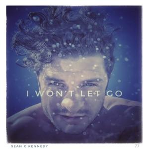 I Won't Let Go - Single