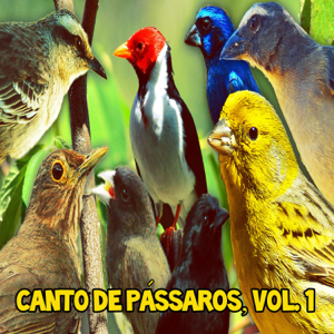 P. Fabio - Canto de Pássaros, Vol. 1
