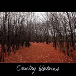 Country Westerns - It's on Me