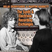 Delia Derbyshire - Hannett and Delia Synth Exchanges Track 12