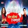 Baba Hansraj Raghuwanshi & Suresh Verma - Mera Bhola Hai Bhandari artwork