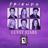 Télécharger Friends, Guest Stars, Vol. 1 (VOST) Episode 19