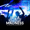 Various Artists - Ibiza Festival Madness, Vol. 2