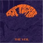 Kryptograf - The Veil