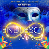 Endless Mass (feat. Mr Mention) - Nu Vybes INT'L Sugar Band