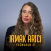 Irmak Arıcı - Yağmurum Ol artwork