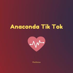 PhoMeme - Anaconda Tik Tok