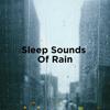 Sleep Sounds of Rain - Rain Sounds & Rain for Deep Sleep
