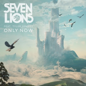 Seven Lions - Only Now feat. Tyler Graves