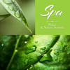 Pure Spa Massage Music - SPA – Piano & Nature Sounds: Soft Piano Jazz Atmosphere for Relaxing Massage kunstwerk
