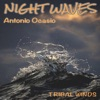 Night Waves Single