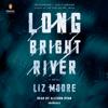 Liz Moore - Long Bright River: A Novel (Unabridged)  artwork